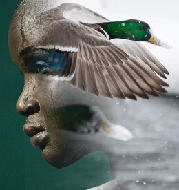 Antonio-Mora-Collage-Photography-6